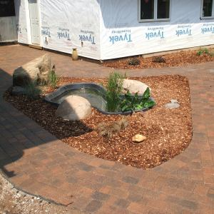 pics-landscaping-055