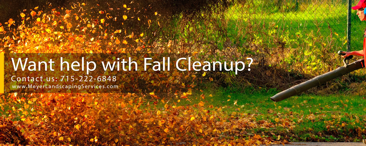 Fall Yard Cleaning Services